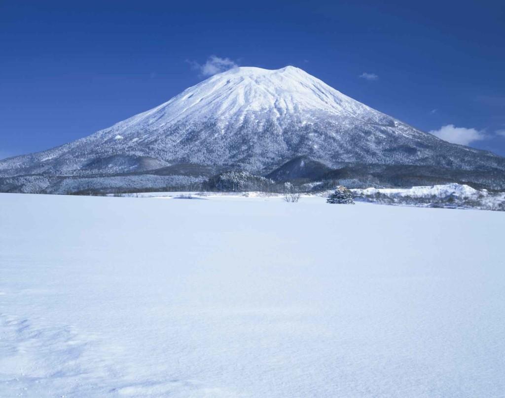 VOYAGE TO SNOWY NISEKO