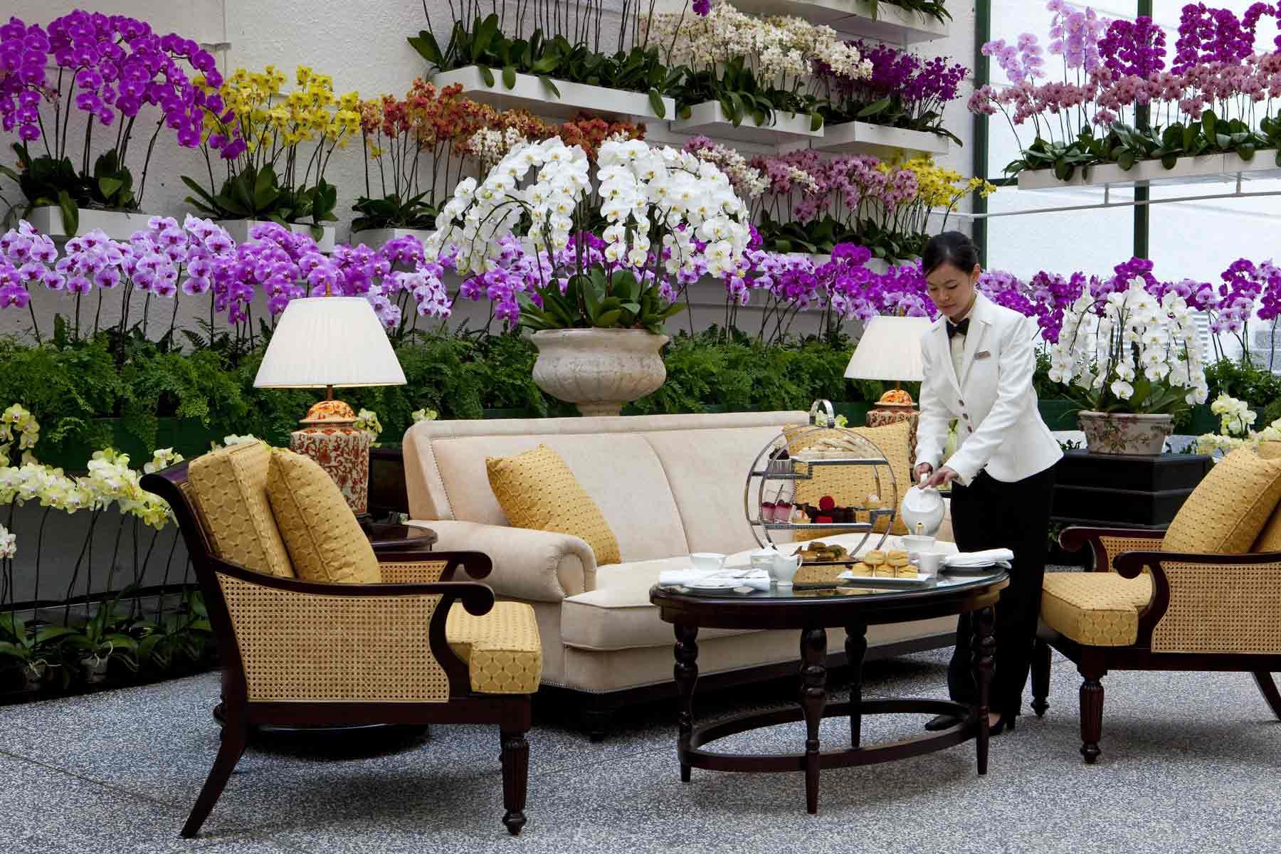 The-Majestic-Hotel-Kuala-Lumpur---The-Orchid-Conservatory