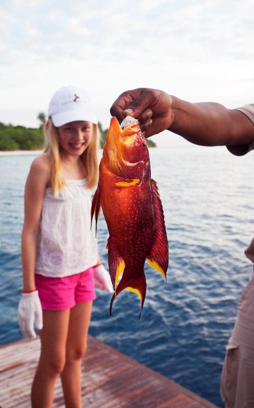 Discover Maldivian marine life