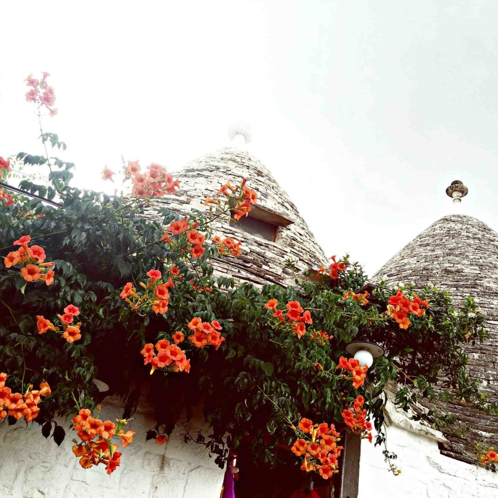 Quirky Alberobello