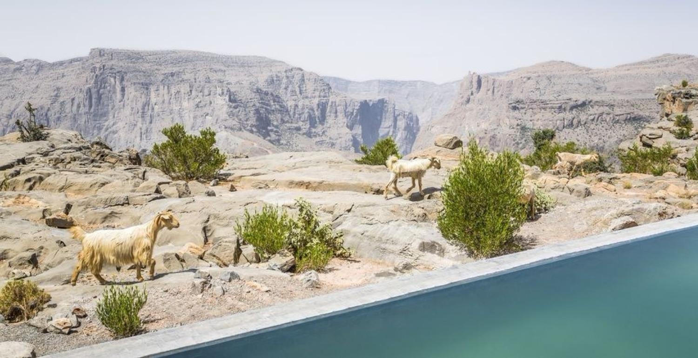 BAZAAR Travel Guide 2018: The Best New Openings