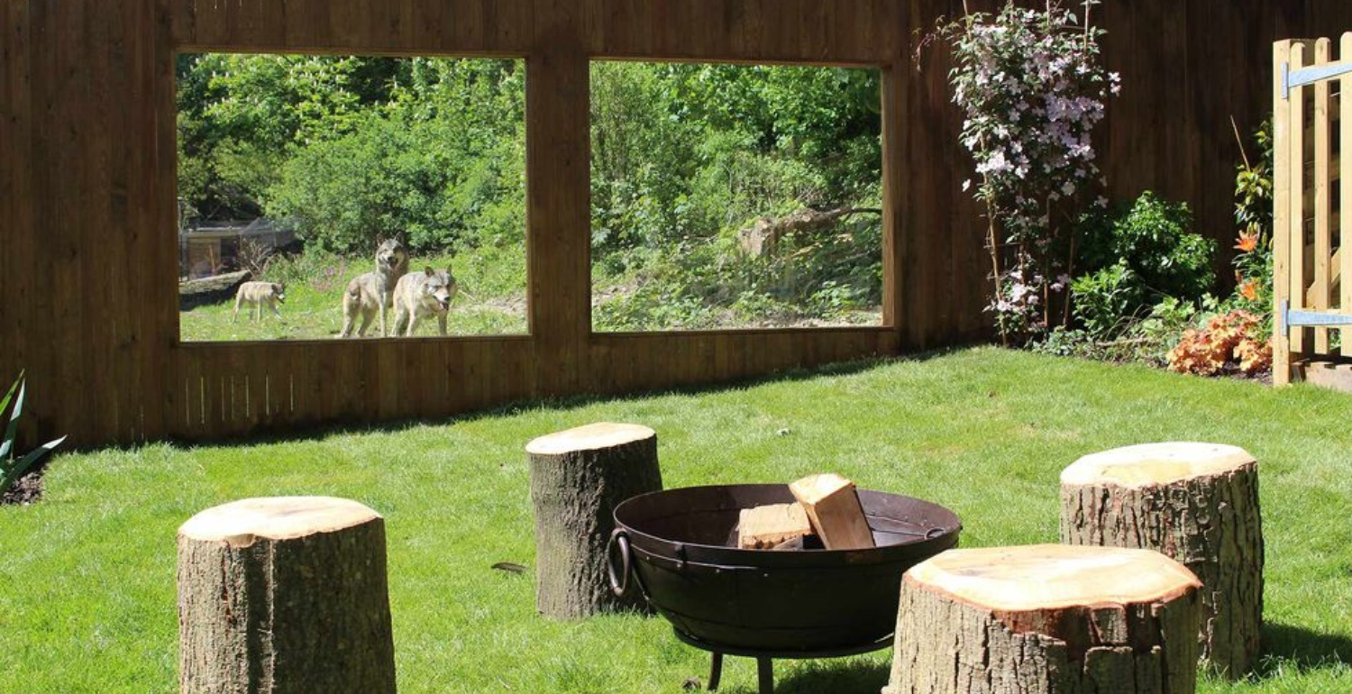 Run With Wolves In This Unique New Hotel Experience