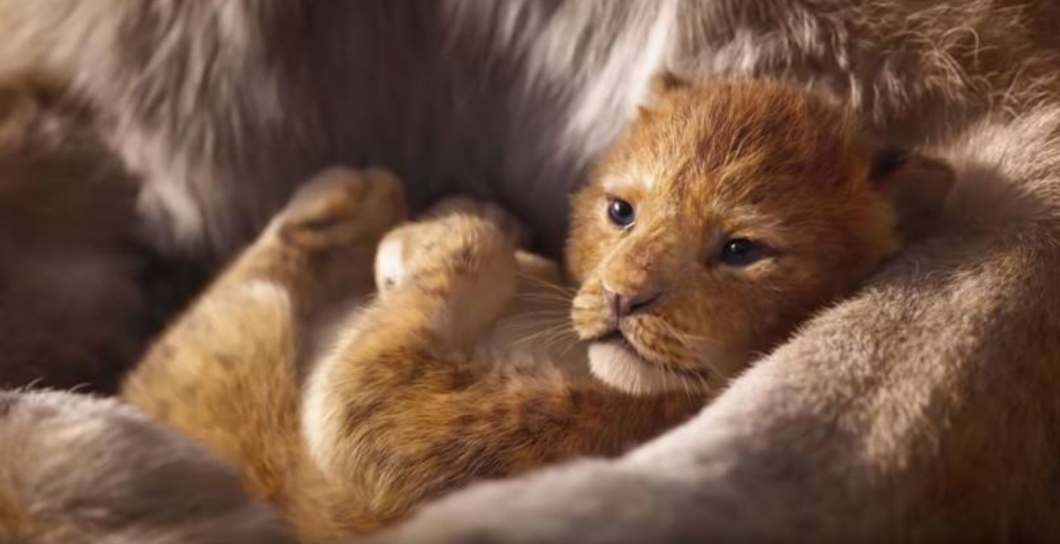 The Live-Action Lion King Trailer Has Been Released