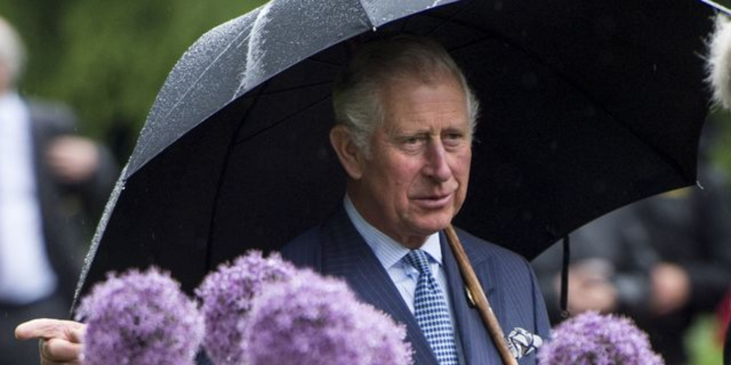 Prince Charles Branches Out Into Sustainable Fashion With Dresses Made From Nettles