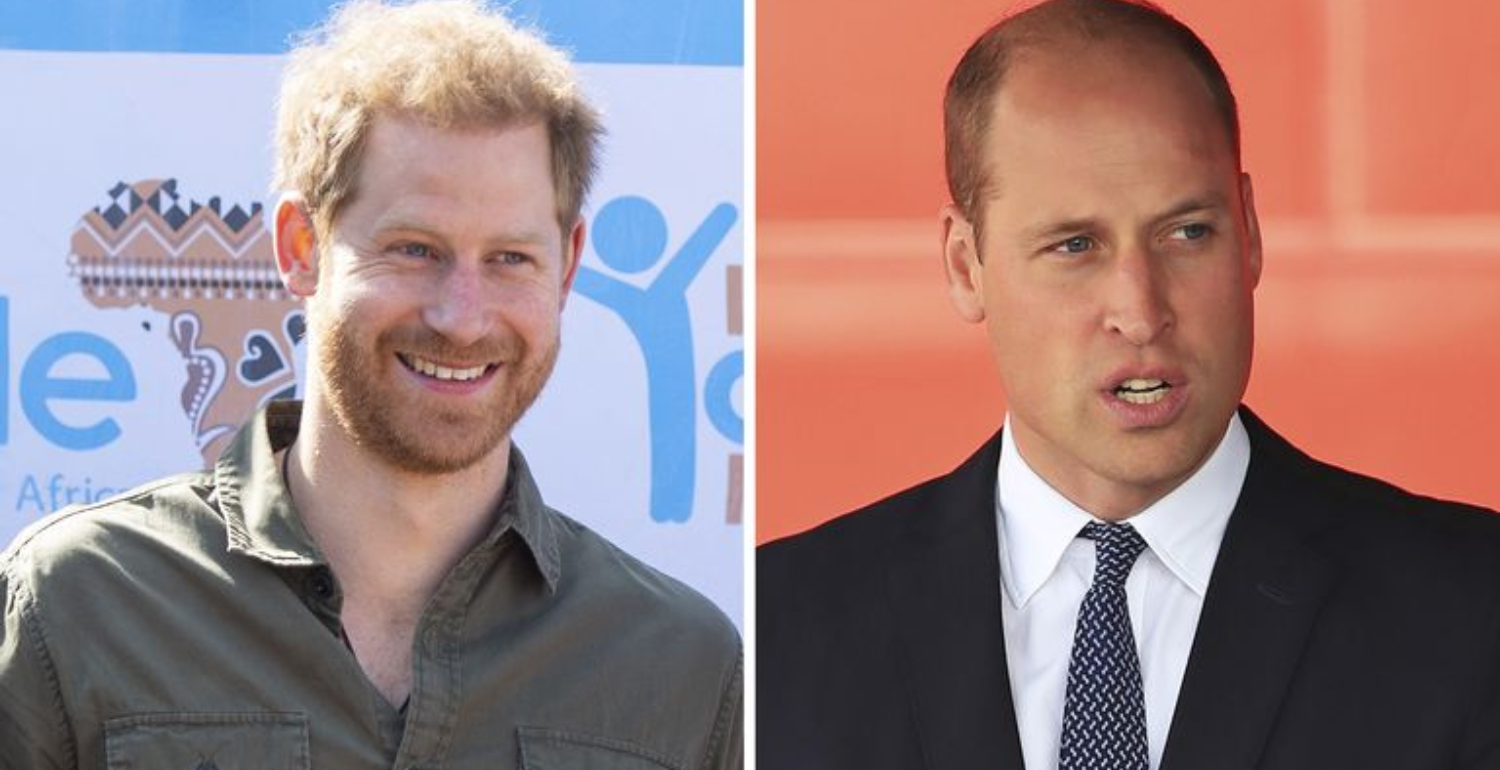 "Prince Harry & Prince William Focus on Climate Crisis: ""It's a Race Against Time"""