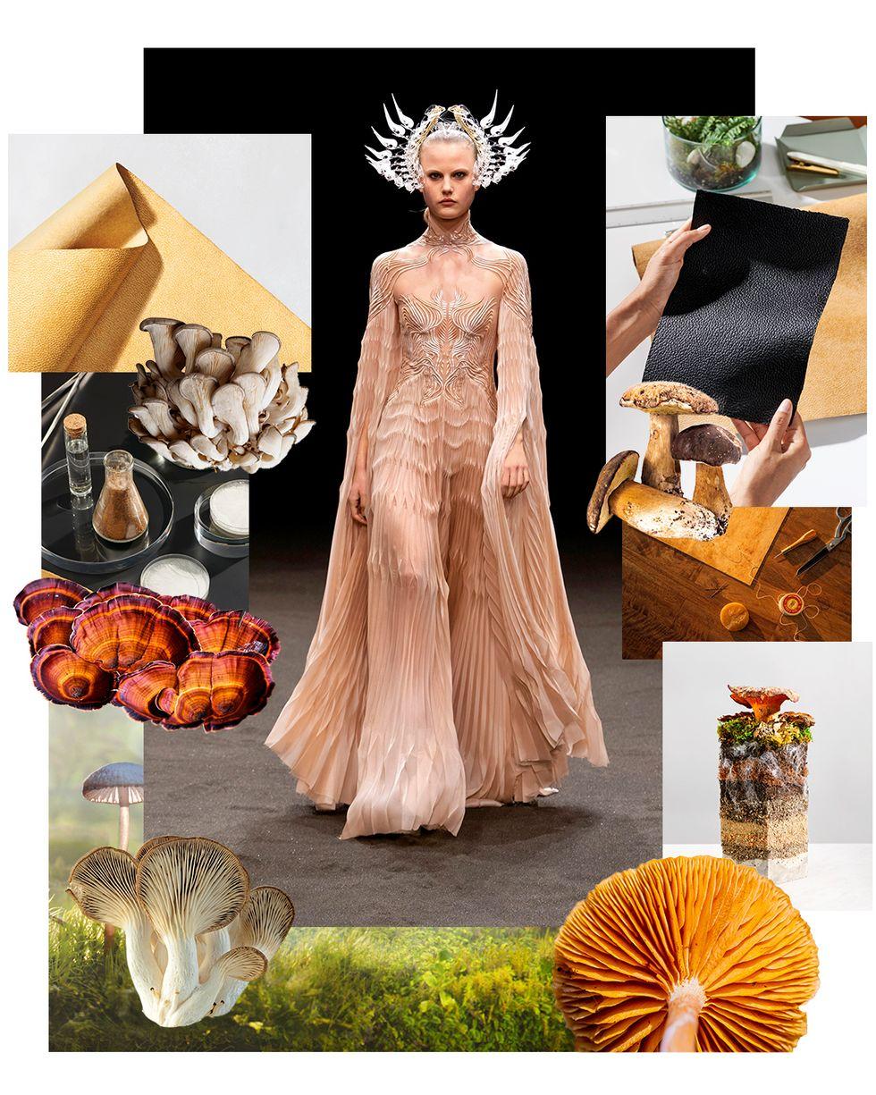 Fashion Fungi
